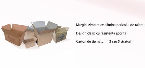 Cutii clasice din carton natur